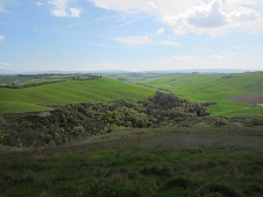 tuscany green scenery