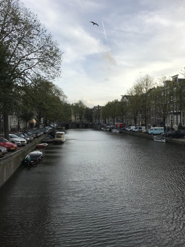 beautiful amsterdam pictures