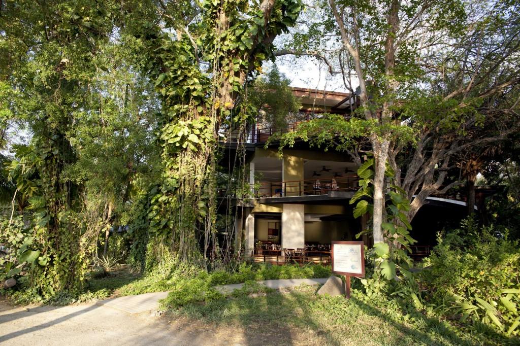 bosque del mar costa rica green hotel