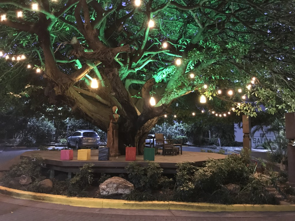studio hote costa rica tree lord of the rings the hobbit