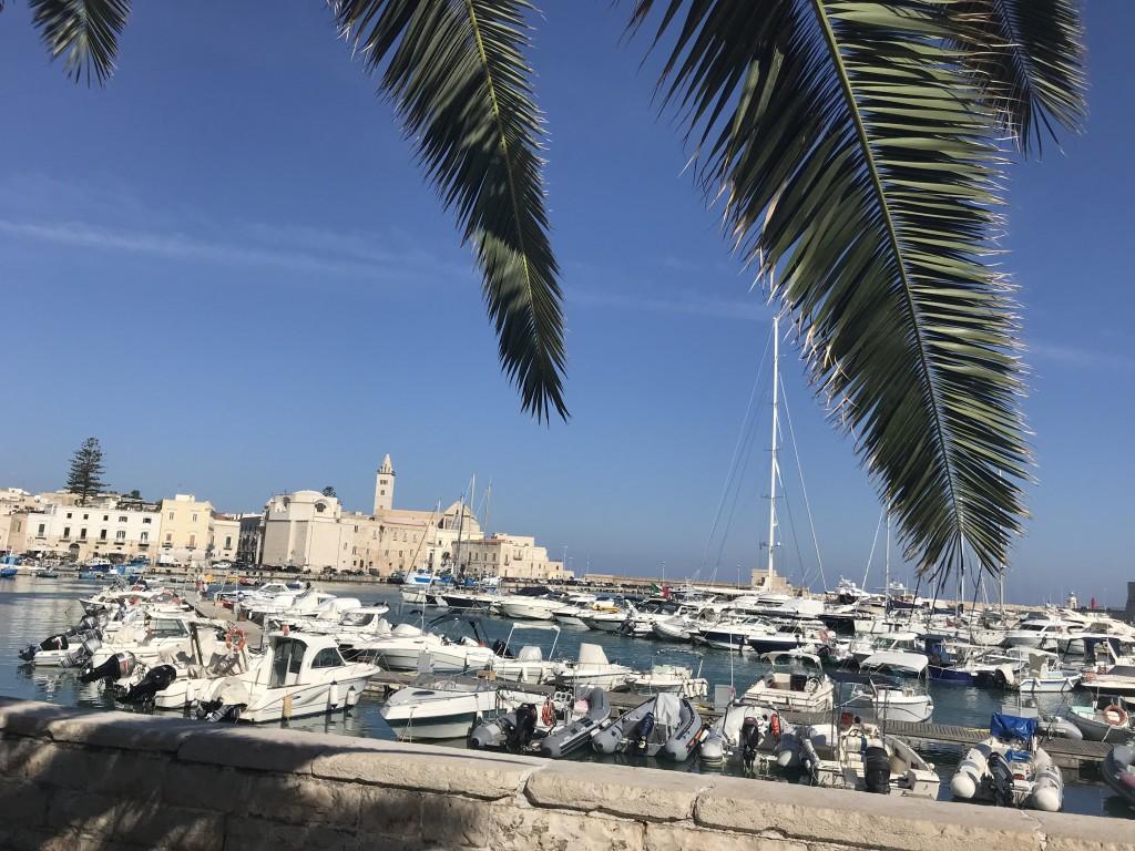 trani boats marina puglia italy